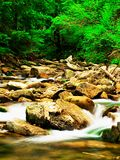 Mountain river. Beautiful mountain river with waterfalls and rocks in the foreground Stock Photos