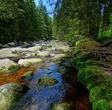Mountain river with big stones Stock Photography