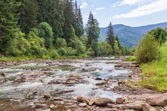 Mountain river with big stones and fast flowing water surrounded by hills with forest from green trees and spruces. royalty free stock image