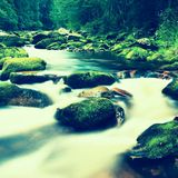 Mountain river with blurred waves of clear water. White curves in rapids between mossy boulders and bubbles create trails. Stock Image