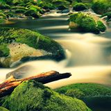 Mountain river with blurred waves of clear water. White curves in rapids between mossy boulders and bubbles create trails. Stock Photos