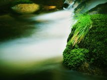 Mountain river with blurred waves of clear water. White curves in rapids between mossy boulders and bubbles create trails. Royalty Free Stock Photography