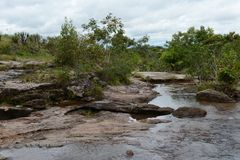 Mountain river Canio Cristales. Colombia Royalty Free Stock Photo