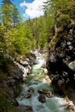 Mountain river in the canyon Royalty Free Stock Images