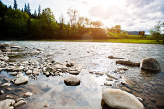 Mountain river in Carpathian mountains Royalty Free Stock Photos
