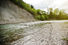 Mountain river in Carpathian mountains Royalty Free Stock Photography
