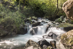 Mountain river with cascades Royalty Free Stock Images