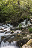Mountain river with cascades Stock Image