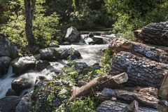 Mountain river with cascades Stock Images