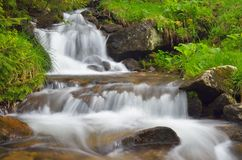 Mountain river with cascades Royalty Free Stock Photography