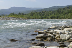Mountain river in the Caucasus Royalty Free Stock Photography