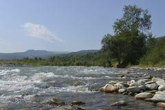 Mountain river in the Caucasus Stock Photos