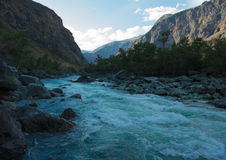 Mountain river Chulyshman Royalty Free Stock Photos