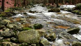 Mountain river with cold crystal water. Slippery stones and foamy chilly water around. Noise of water. stock video footage