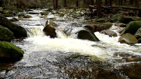 Mountain river with cold crystal water. Slippery stones and foamy chilly water around. Noise of water. stock footage