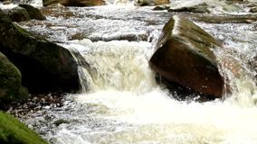 Mountain river with cold crystal water. Slippery stones and foamy chilly water around. Noise of water. Mountain river with cold crystal water. Slippery stones stock footage