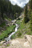 Mountain river in Colorado Rockies Royalty Free Stock Images