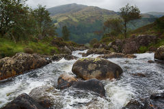 Mountain River. Creek in Galloway Forest Park in the Scottish mountains royalty free stock images