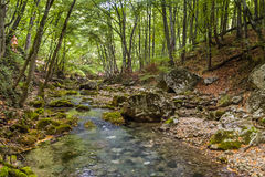 The mountain river in the Crimea Royalty Free Stock Photo