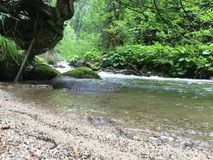 Mountain river, Demanova , Slovakia. Nature , Travel , Mountain , Walk , Relax Royalty Free Stock Image