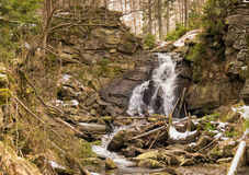 Mountain river in early spring Royalty Free Stock Photo