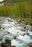 Mountain river in early spring Stock Images