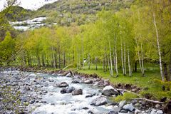 Mountain river in early spring Royalty Free Stock Photography