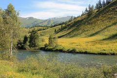 Mountain river in East Kazakhstan Stock Photography