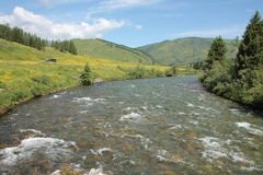 Mountain river in East Kazakhstan Stock Image