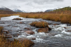 Mountain river in the Eastern Sayan Royalty Free Stock Photo
