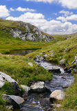 Mountain river in Fagaras Stock Images