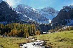 Mountain river during fall Stock Photos