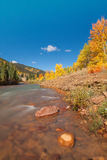 Mountain River in Fall Stock Images