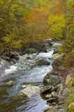 Mountain River with Fall Colors. A river in the Great Smoky Mountains running through a forest in fall color Royalty Free Stock Photo
