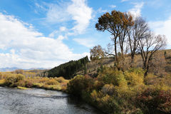 Mountain River with Fall Colors. Autumn colors frame a beautiful mountain river Royalty Free Stock Photo