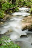 Mountain river falling and flowing trough stone Royalty Free Stock Photography