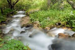 Mountain river falling and flowing trough stone Royalty Free Stock Photos