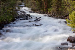 Mountain river. fast stream water Royalty Free Stock Image