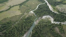 Mountain river. fast stream water. Russia Altai stock footage