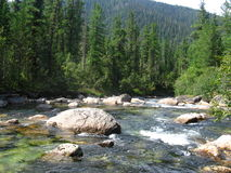 Mountain river. The Fast river in Syberia royalty free stock photo