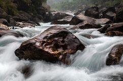 Mountain river flow. Along rock royalty free stock photo