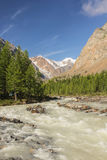 The mountain river flowing down from glaciers Royalty Free Stock Photo