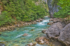 Mountain river flowing by the gorge. With rocks and trees Stock Photos