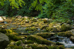 Mountain river flowing through the Grand Canyon of Crimea bottom. Royalty Free Stock Image