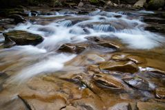 Mountain river flowing through the green forest. Stream in the wood. Stock Images