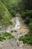 Mountain river. Stock Photography