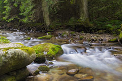 Mountain river flowing among mossy stones Stock Photo