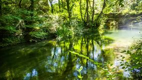 Mountain River Flowing In Picturesque Green Forest. Crane shot of a picturesque view - fantastic place in the mountains of Crimea - calm river flowing among stock footage
