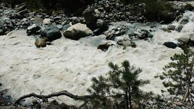 Mountain river flowing between rocks in slow motion stock footage