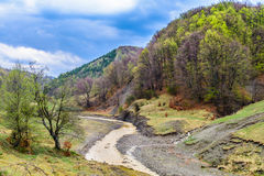 Mountain river flowing throw spring nature landscape. After the rain Royalty Free Stock Photo